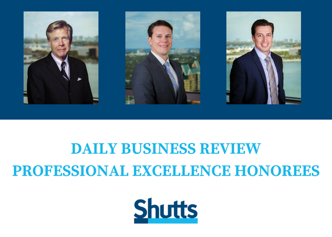 Daily Business Review Professional Excellence Honorees
